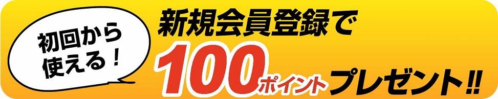 新規会員登録で初めてのお買い物から使える100ポイントプレゼントバナー