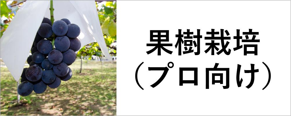 使用シーンから探す_果樹栽培(プロ向け)のアイコン